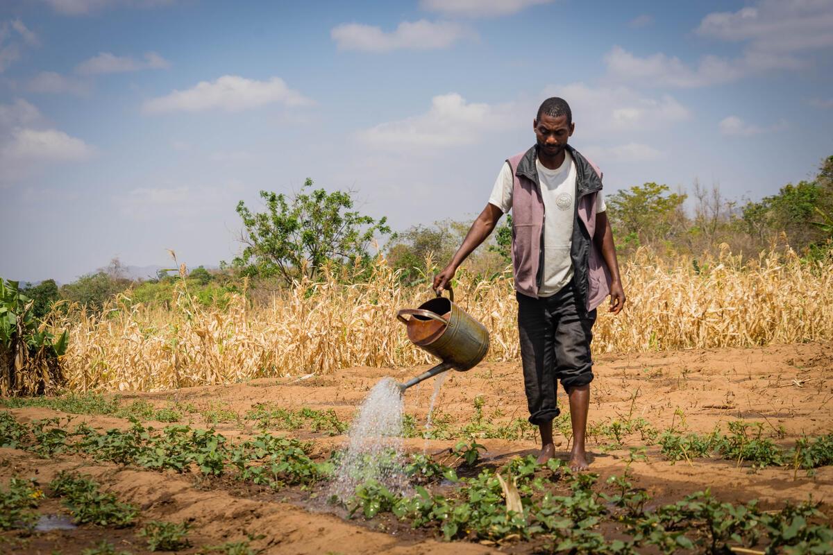 WFP Centro de Excelência do WFP apoiará Namíbia em programa de alimentação escolar vinculada à agricultura local