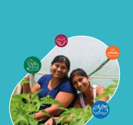 Centro de Excelência WFP, Brasil e Peru participam de evento sobre alimentação escolar com compras lo