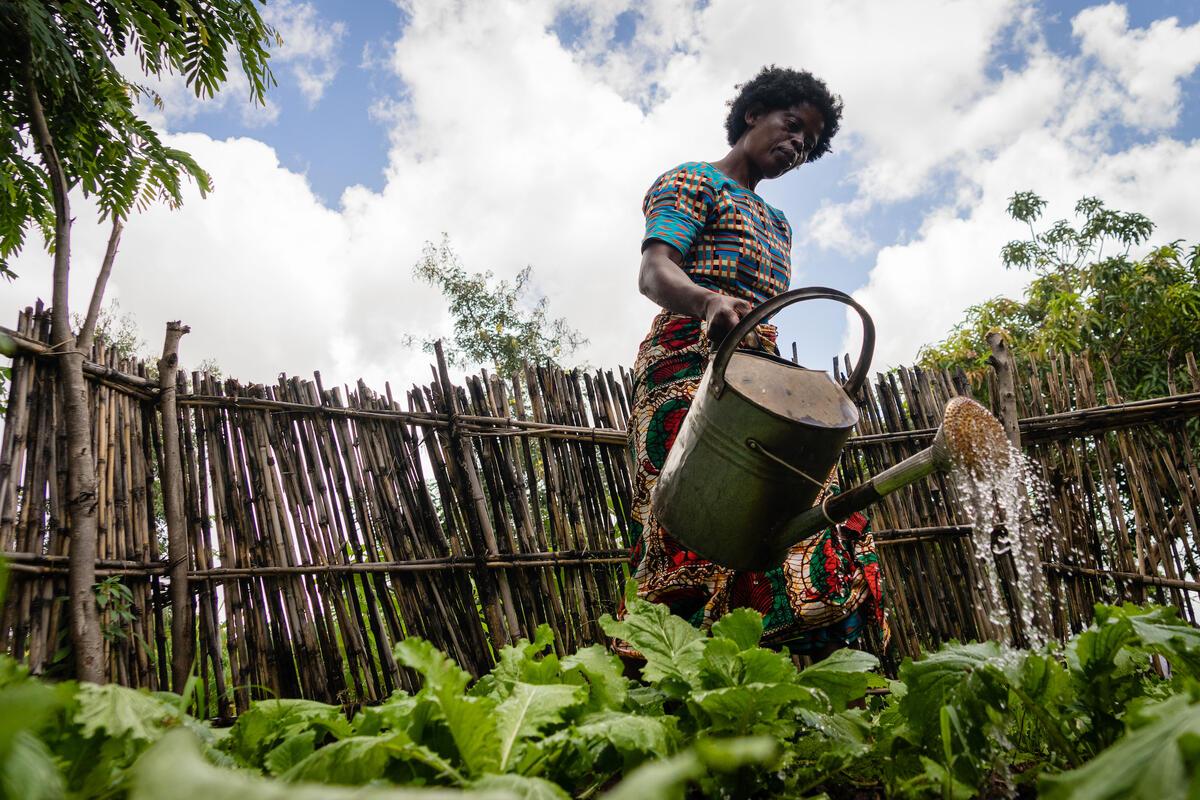 Projetos do Centro de Excelência são discutidos no Diálogo Brasileiro da Cúpula dos Sistemas Alimentares