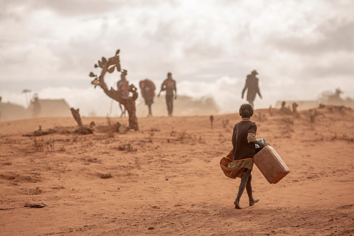 Dia Mundial da Alimentação: crise climática impulsiona a fome, alerta WFP
